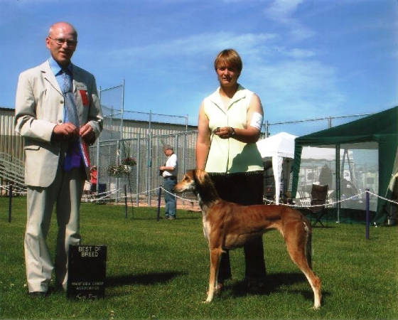 Daizy: Best of Breed for first point