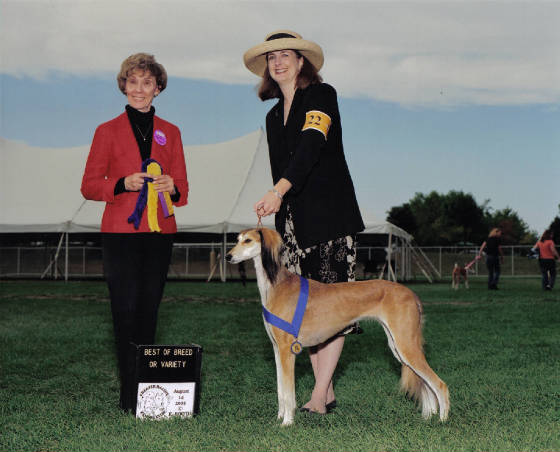 Zafirah: Best of Breed, ASA medallion supported