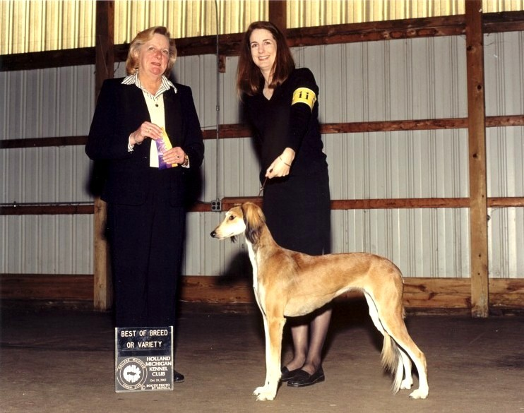 Best of Breed: Holland KC